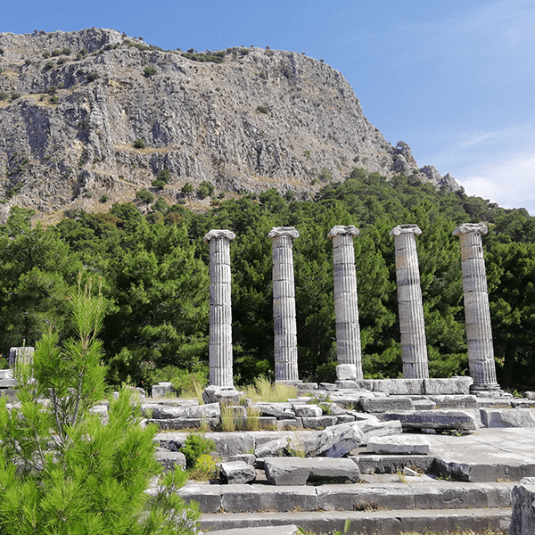 Private Priene – Miletos – Karine (Doganbey Fishing Village) Tour