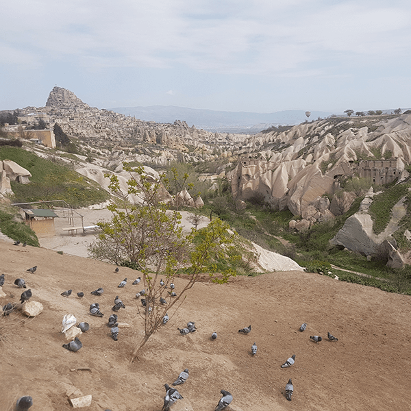 Goreme and Fairy Chimneys